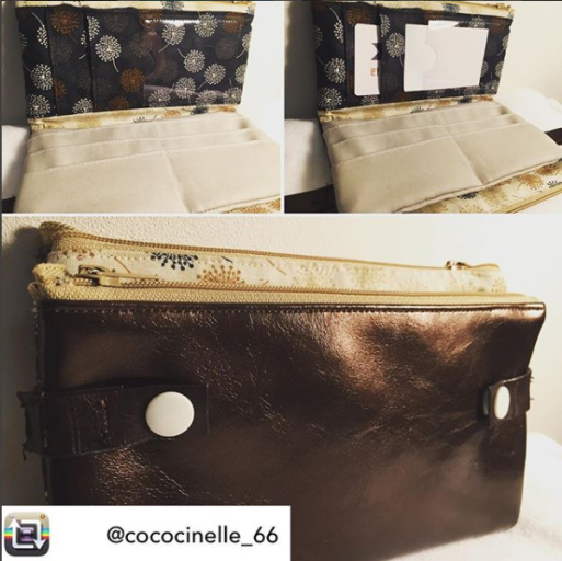 Jules_coccinelle